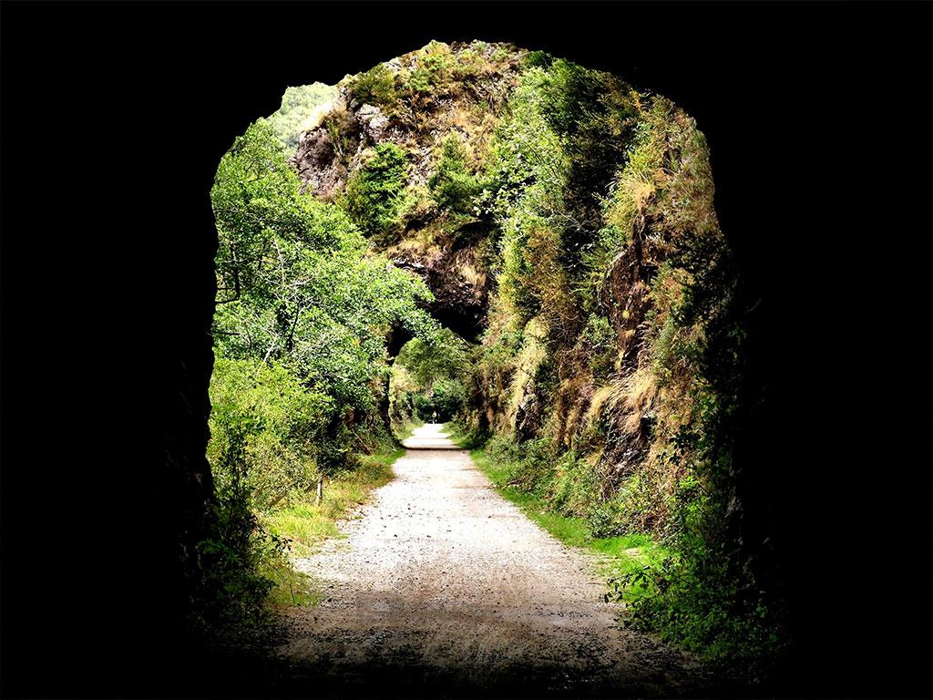 Jardines Parque Nacional de Bucaco